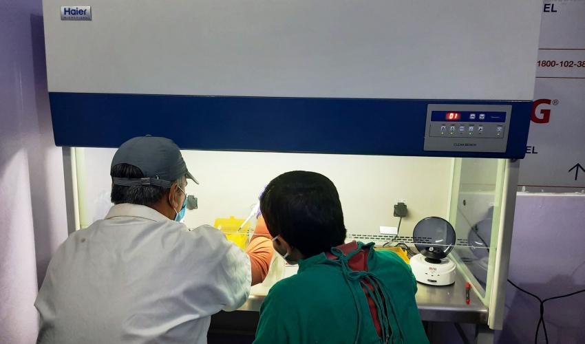 डोटीका थप ४६ जनामा कोरोना संक्रमण पुष्टि